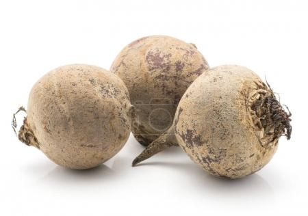 Three beetroot (red beet) bulbs isolated on white background ra