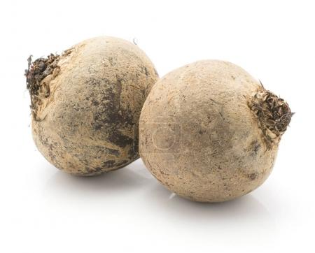 Beetroot (red beet) two raw bulbs isolated on white backgroun