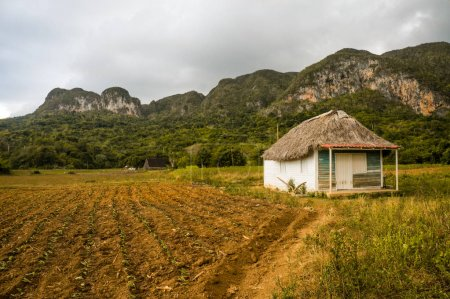 Photo for Beautiful scenic landscape with little house in mountains, Cuba, Vinales Valley, november 2016 - Royalty Free Image