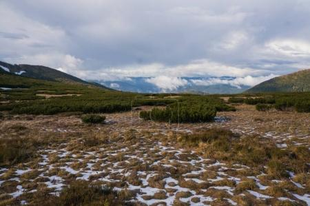 Photo for Beautiful landscape view of snowy valley and cloudy sky, Ukraine, Carpathians, may 2016 - Royalty Free Image
