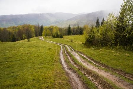 Photo for Beautiful landscape view of road in green mountains with cloudy sky, Ukraine, Carpathians, may 2016 - Royalty Free Image