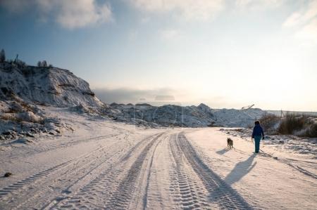 Foto de Vista trasera de la mujer y el perro caminando juntos en la carretera nevada en las montañas, Bielorrusia, Vitebsk - Imagen libre de derechos
