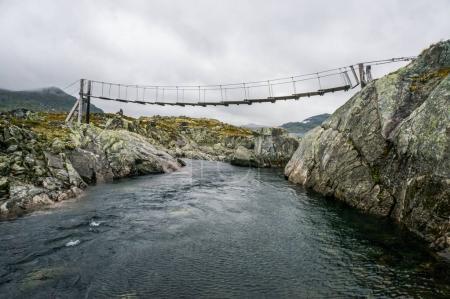 Hinged bridge
