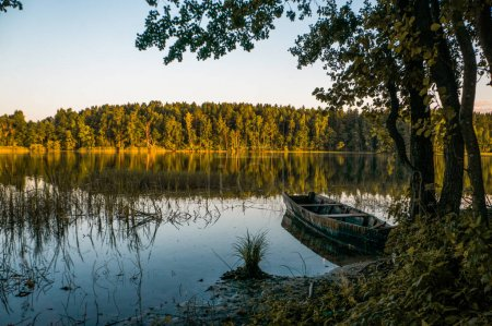 wooden boat on pond