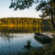 Beautiful scenic view of wooden boat on pond with ...