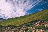 """Постер, картина, фотообои """"стадо пасущихся на зеленых пастбищах в горах, Гималаи, перевал ротанг"""""""