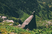 huge stones and green plants in scenic mountains, Indian Himalayas, Rohtang Pass
