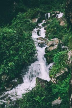 Photo for Amazing waterfall with rocks and green plants in indian himalayas - Royalty Free Image