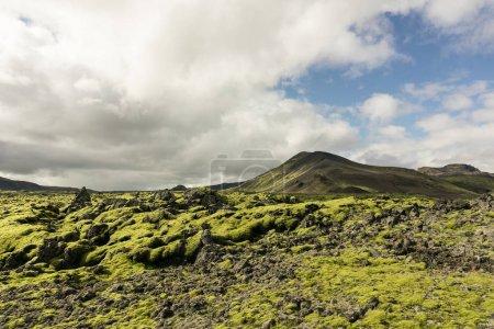 Photo pour Paysage pittoresque majestueux avec montagnes et mousse en Islande - image libre de droit