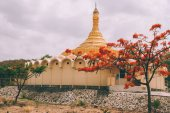 architecture of beautiful ancient indian temple and blooming trees