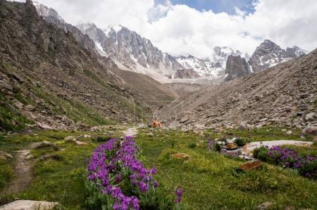 Blick auf Wiese mit Steinen und Blumen gegen Fußweg am Fuß von Felsen, ala archa Nationalpark, Kyrgyzstan