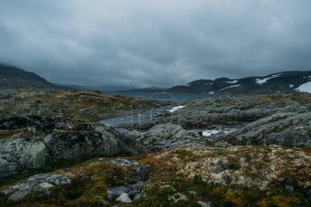 view of rocky terrain with lake on background surrounded by hills, Norway, Hardangervidda National Park