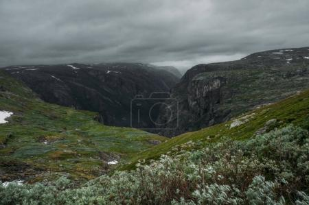grassy slopes of rocks during foggy weather, Norway, Hardangervidda National Park