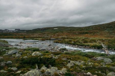 river stream going through stones and hills on field, Norway, Hardangervidda National Park