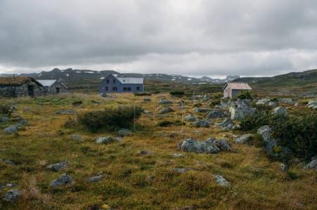 view of field with green grass and scattered stones against small rural houses, Norway, Hardangervidda National Park