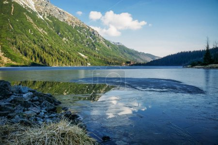 view of mountain lake with trees on slopes of mountain over water, Morskie Oko, Sea Eye, Tatra National Park, Poland