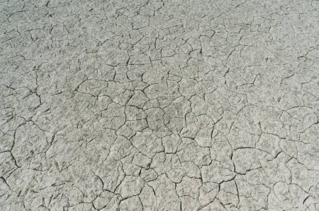 Dry soil with deep cracks, Crimea, Ukraine, May 2013