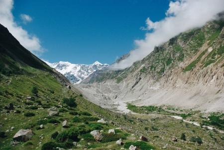 beautiful ravine in green mountains region, Russian Federation, Caucasus, July 2012