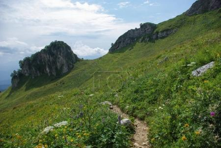 view on path and valley, Russian Federation, Caucasus, July 2012