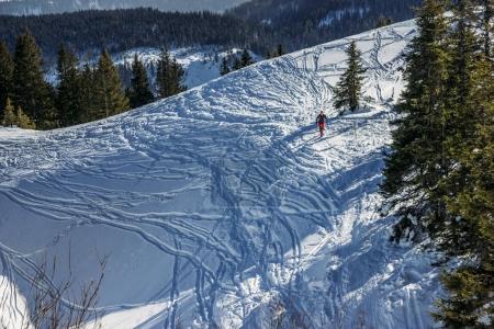 Photo pour Randonnées touristiques dans les montagnes enneigées avec arbres en hiver, Alpes, Allemagne - image libre de droit