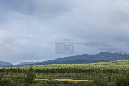 Photo for Scenic view of cloudy sky, mountains and forest, Altai, Russia - Royalty Free Image