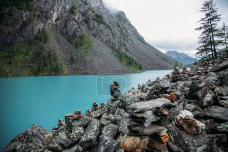 Photo for Clear lake, trees and mountains, Altai, Russia - Royalty Free Image