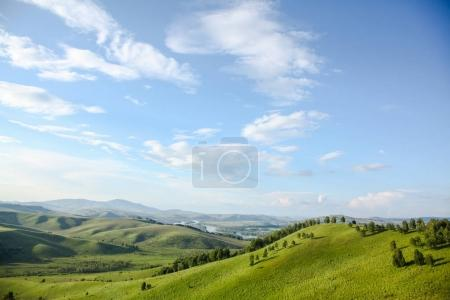 panoramic view of green valley with trees and mountains, Altai, Russia