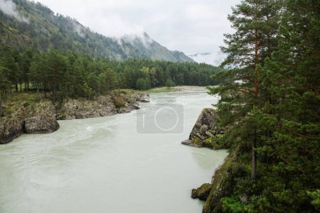 Photo for Mountain river in valley and majestic mountains, Altai, Russia - Royalty Free Image