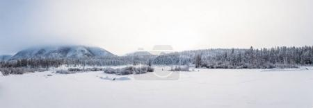 beautiful winter landscape with firs in mountains, jakutia
