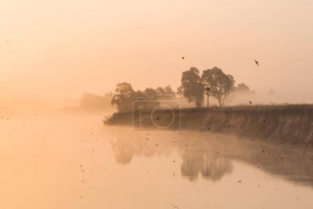 Photo pour Beau paysage avec lac et rivage au lever du soleil brumeux, polésie, pripyat - image libre de droit