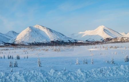 Photo pour Beau paysage de neige couverte de montagnes et sapins, route de la kolyma, Fédération de Russie - image libre de droit
