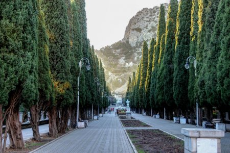 Photo for Beautiful view of street in resort town on sunny day, crimea, simeiz - Royalty Free Image
