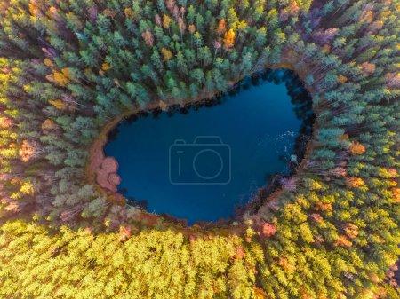 Photo pour Vue aérienne sur les arbres majestueux et le magnifique lac de montagne, Blue Lake, Belarus - image libre de droit