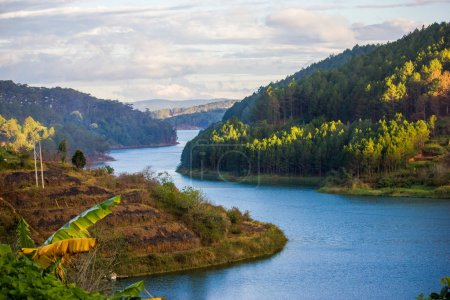 Photo for Beautiful calm river and hills covered with tropical plants and trees, vietnam, dalat region - Royalty Free Image