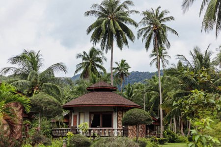 Photo for Beautiful landscape with bungalow and green palms - Royalty Free Image