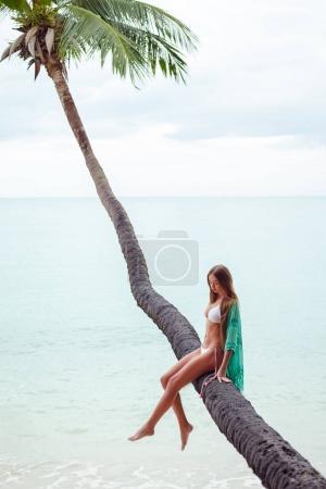 Photo pour Jeune fille en bikini assis sur un palmier au-dessus de l'océan - image libre de droit