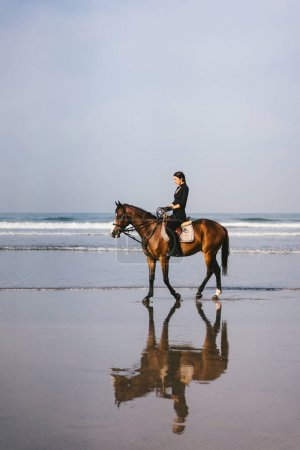Photo for Young female equestrian riding horse on sandy beach near ocean - Royalty Free Image