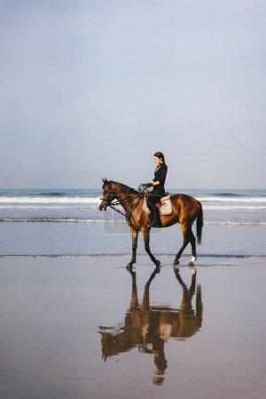 young female equestrian riding horse on sandy beach near ocean
