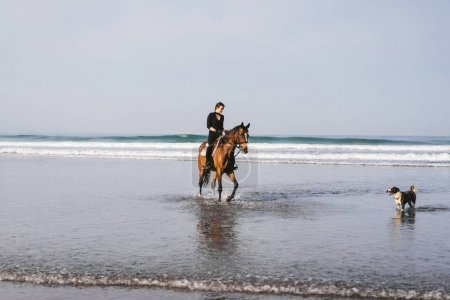dog and young woman riding horse on beach near ocean