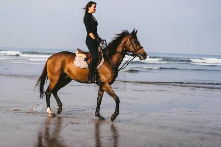 Photo pour Vue latérale du jeune cheval avec océan derrière - image libre de droit