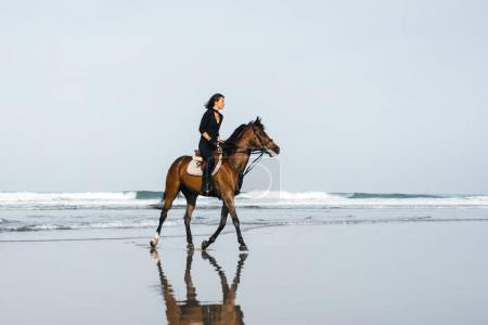 Photo for Side view of young female equestrian riding horse on sandy beach - Royalty Free Image