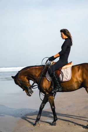 Photo for Side view of female equestrian riding horse on sandy beach - Royalty Free Image