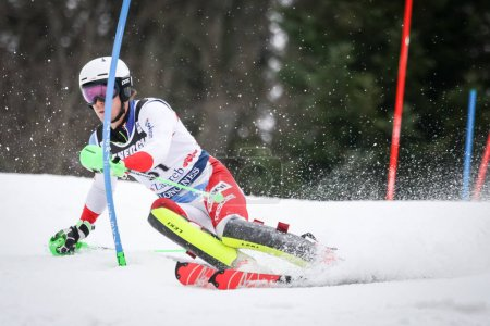 Audi FIS World Cup Mens