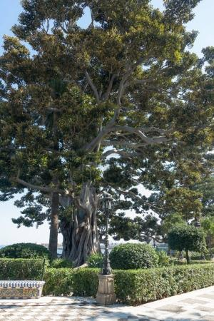 view of beautiful spanish public park