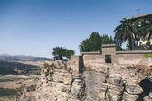 """Постер, картина, фотообои """"живописный вид на каменной стеной, пальмы и опираясь на рок против горы пейзаж, Ронда, Испания"""""""