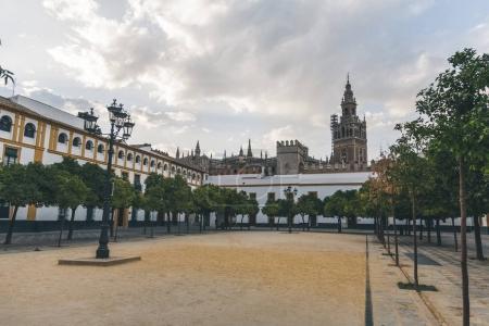 Photo pour Vue panoramique sur la place de la ville avec des arbres et la cathédrale de Séville, espagne - image libre de droit