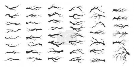 Illustration pour Ensemble vectoriel branches d'arbres secs sur fond blanc - image libre de droit