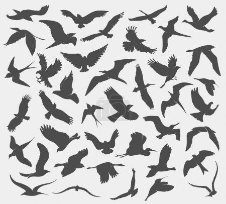 pattern with silhouettes of flying birds