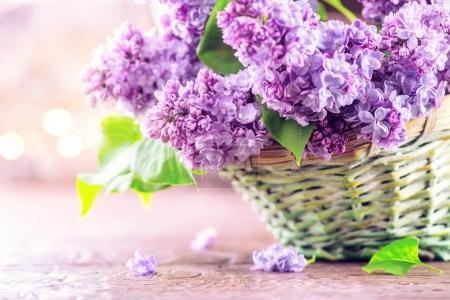 Photo pour Bouquet de fleurs lilas en panier sur fond flou - image libre de droit