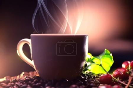 Composition with cup of coffee on wooden table with coffee beans and coffee plant